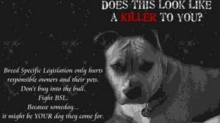 The Denver Pitbull Genocide Courtesy Of Save A Pitbull Productions 2013