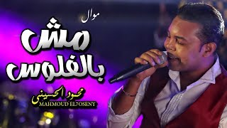محمود الحسينى 2019