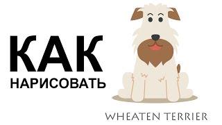 Рисунки собак. КАК НАРИСОВАТЬ СОБАКУ карандашом(Как нарисовать собаку поэтапно карандашом для начинающих за короткий промежуток времени. http://youtu.be/-6uNmP-0AD8..., 2015-06-25T06:48:28.000Z)