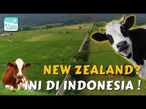 ini-bukan-di-new-zealand-tapi-di-indonesia!-sumatera-barat-|-tempatwisata.biz.id
