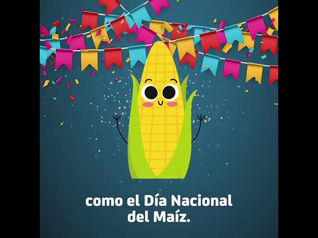 29 de septiembre: Día Nacional del Maíz
