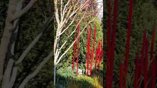 A visit to Dale Chihuly Garden and Glass museum in Seattle Center  USA