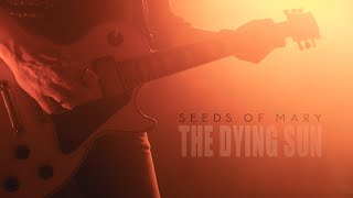 Seeds Of Mary - The Dying Sun | Official Live Session Video | 4K