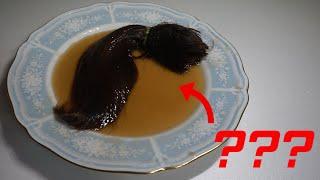 Hair in Coca cola for 1 YEAR - 코카 콜라에 1년 있었던 머리카락 ★