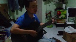 Hoa pensee guitar
