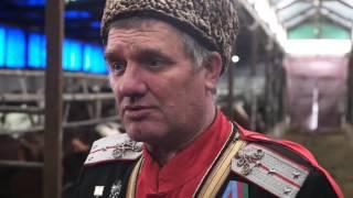 Кубань VS Литва. Как живется фермерам?
