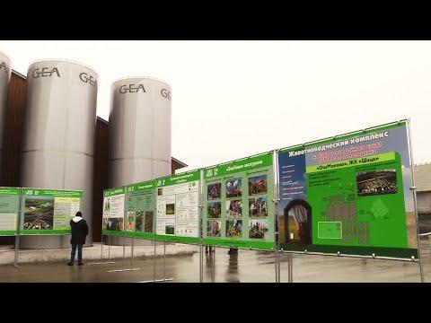 Самая крупная в европейской части России мега-ферма открылась в Рязанской области