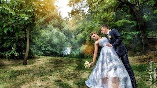 Олеся и Сергей Хроника свадебного дня