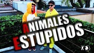Animales Estupidos /Harold - Benny / YaMaduramos