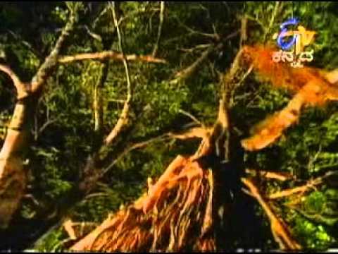 Moodala Mane Kannada Serial Title Song