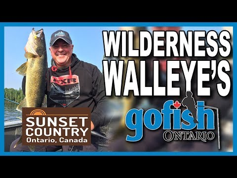 Walleye Of Minnitaki Lake- Timber Edge Camps- Teaser