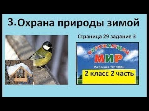Чем кормят птиц/Охрана природы зимой №3 (Окр.мир 2 класс Перспектива)