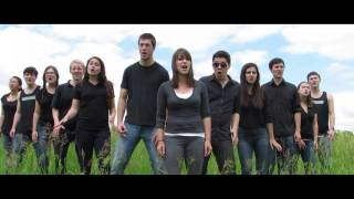 Some Nights (Fun.) - Veritones A Cappella Cover