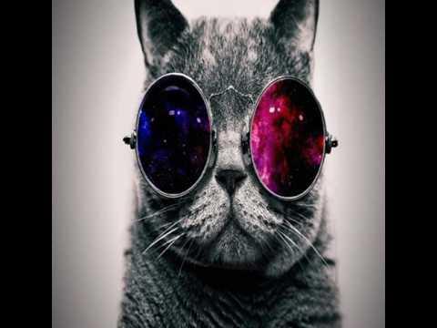 Cat Rapper- Fetty Wap #Neuman Marcus
