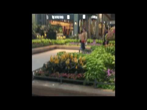 Carrefour Laval mall مونتريال المول