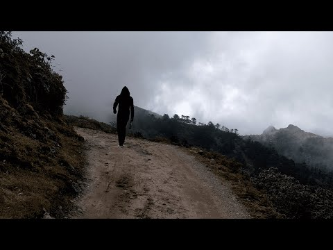 a-walk-in-sandakphu-|-সান্দাকফু-|-4k-raw-video
