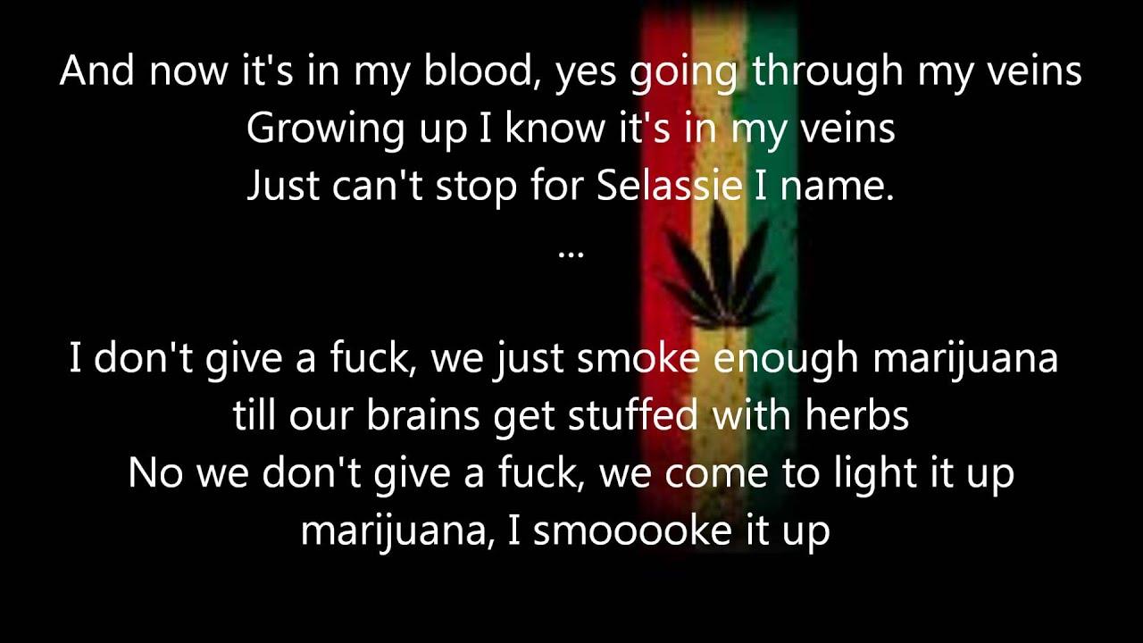 Ice Cube - Smoke Some Weed Lyrics | MetroLyrics