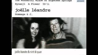 Joëlle Léandre - John Cage: The Wonderful Widow of Eighteen Springs