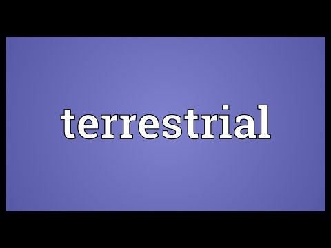 Terrestrial Meaning