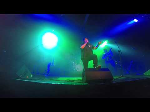 Hedfuzy-Black River Live