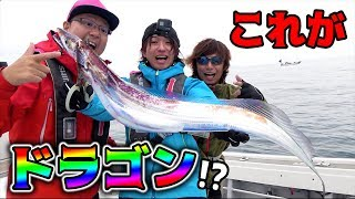 水深150mの海でドラゴンと呼ばれる魚が・・・
