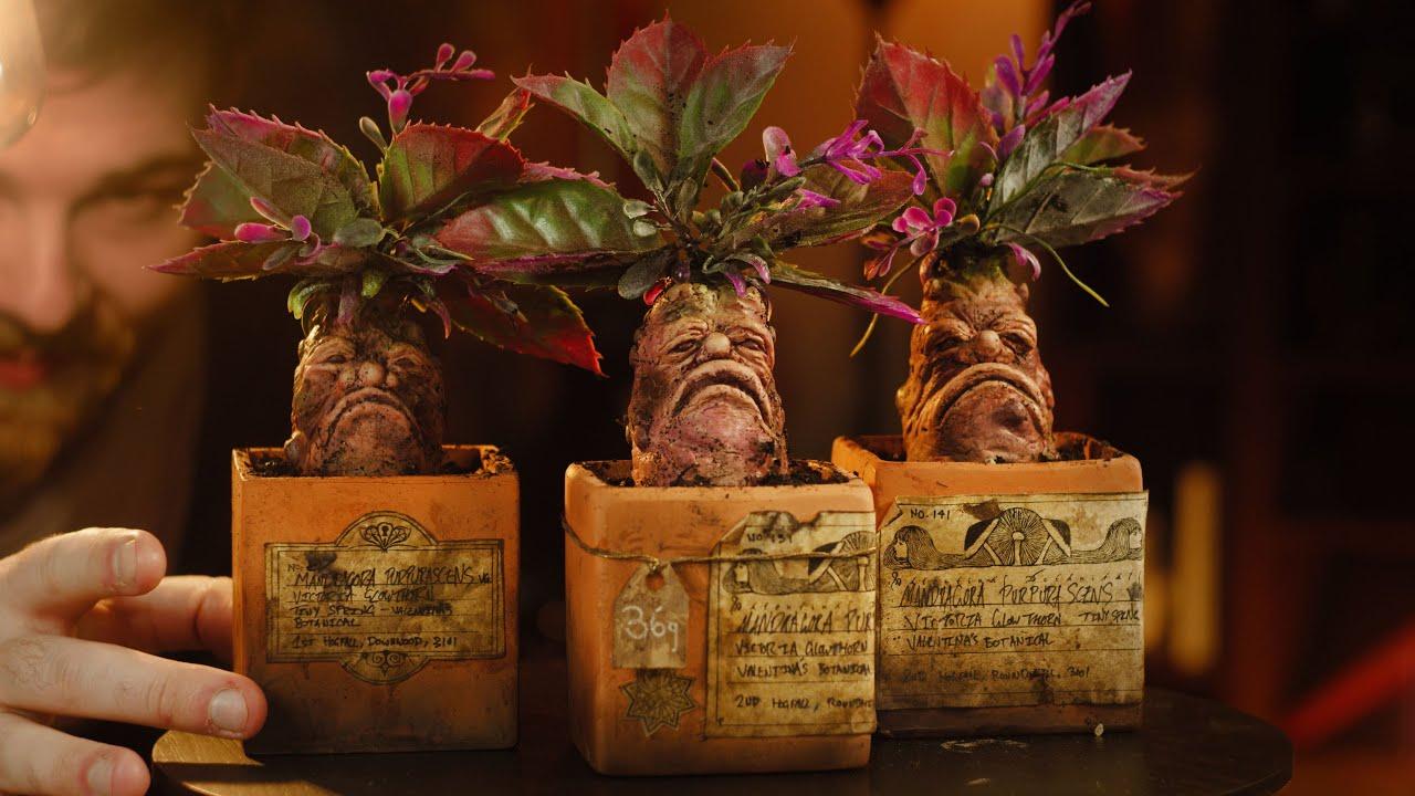 Making Harry Potter inspired Mandrakes   Prop DIY