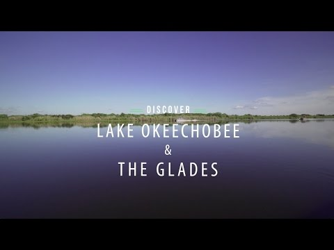 Discover Lake Okeechobee & The Glades, Florida | Everglades | The Palm Beaches