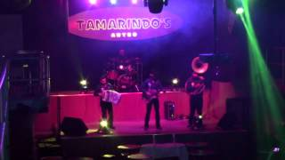 """Baixar LOS REGIONALES interpretan """"Como estas tu"""" en Tamarindos Antro - 3 Grupero - Dic 2014"""