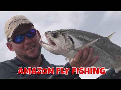 AMAZING AMAZON JUNGLE FLY FISHING !!!