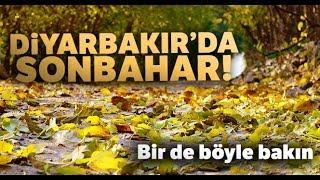 Diyarbakır'da Sonbahar Güzellikleri Havadan Görüntülendi
