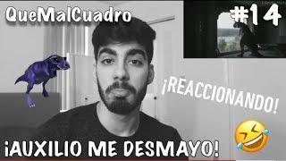 """Los Mejores """"Auxilio Me Desmayo Cállese Viejo Lesbiano"""" - REACCION😂"""