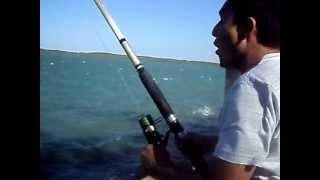Pescaria Camocim Ce
