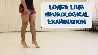 Lower Limb Neurological Examination - OSCE guide (New Version)
