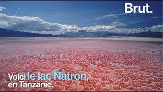 En Tanzanie, le lac Natron est menacé