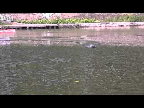 RC boat Wavebreaker.WMV