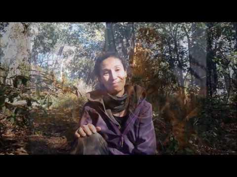 Brujas, wicca y medio ambiente