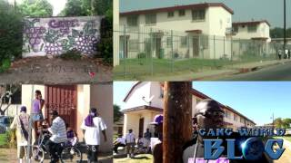 Grape Street Watts Crips History (South Central Los Angeles)
