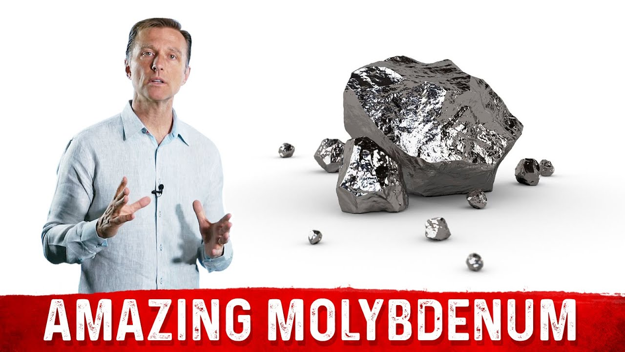 Image result for Dr. Eric Berg Featuring: Molybdenum for Better Detoxification