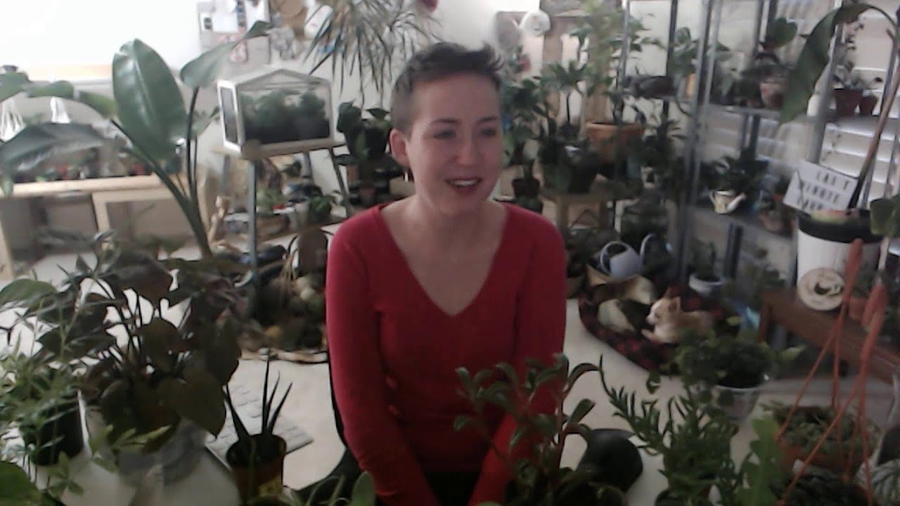 Come cry about my dog with me and see my new plants  | Last Minute Laura