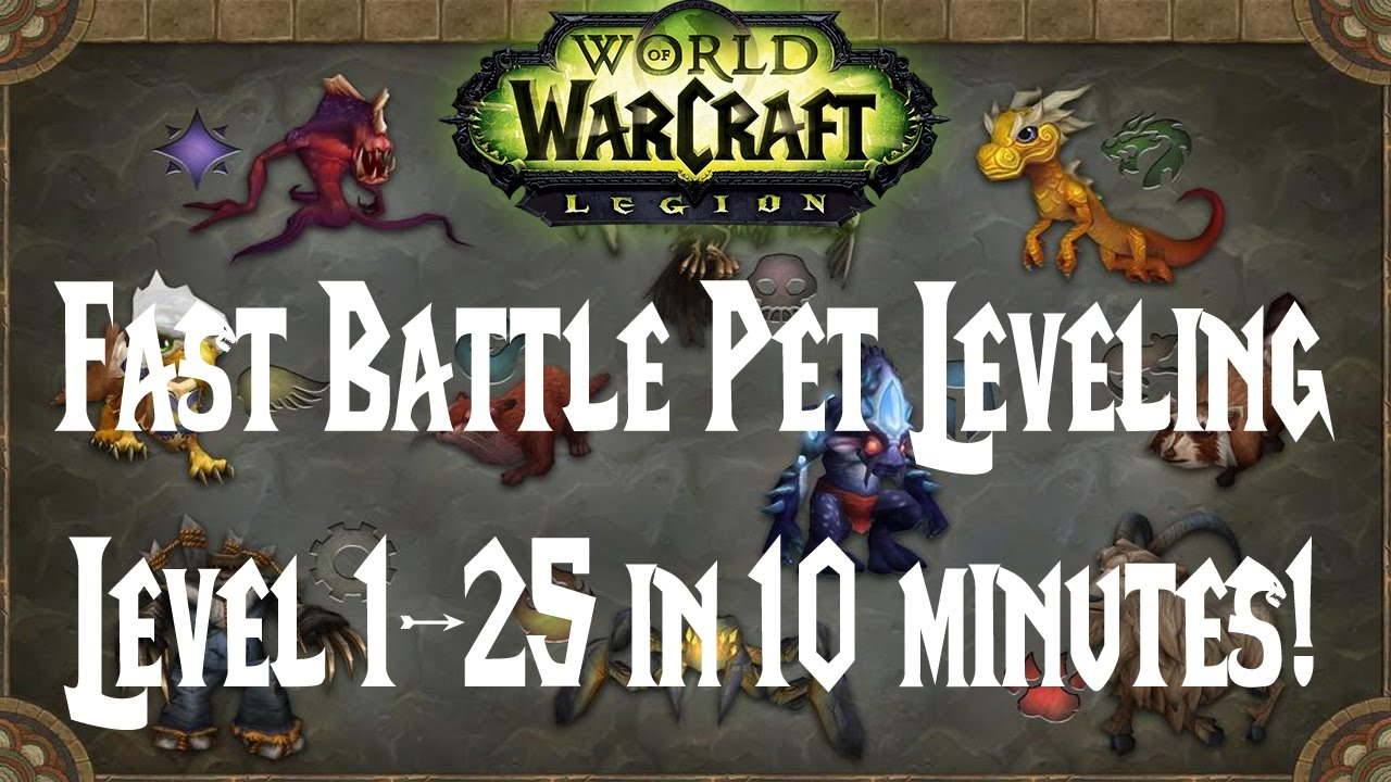 wow easy battle pet leveling level 1 to 25 in 10 minutes youtube rh youtube com WoW Profession Leveling Guide 1-110 Leveling Guide WoW