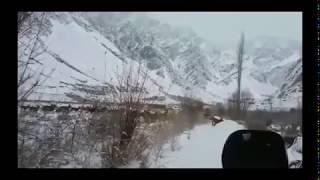 Ibex Crossing Snowy Roads in Khyber Hunza Valley of Gilgit Baltistan