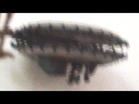 UFO Sightings 10 Bizarre UFO Encounters! Shocking Accounts 2015