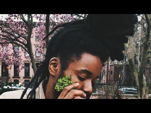 Nesta- I love leaves (Audio)
