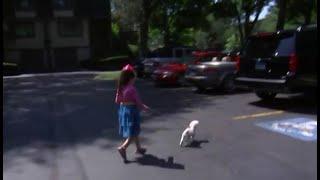 La bimba di 8 anni esce a passeggiare con il cane, il gesto choc della vicina di casa  | LE NOTIZIE