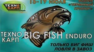 Ловля Трофейного Карпа. Big Fish Enduro. Технокарп.(Очевидно то, что в карповых соревнованиях исход, прежде всего, зависит от сектора. Неудачный сектор почти..., 2015-08-25T09:53:01.000Z)