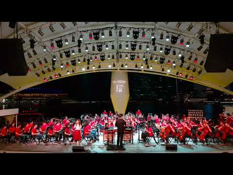 The Moon Represents My Heart | 月亮代表我的心 | NUS Chinese Orchestra
