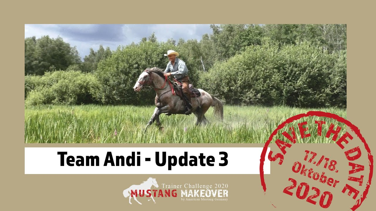 MUSTANG MAKEOVER 2020 - Team Andi (TAG 5038) - Update 3