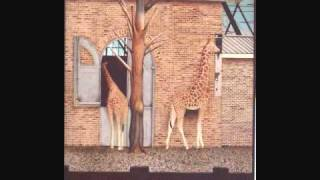 Zoo By Anthony Browne.wmv