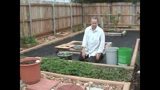Gardening Tips Spearmint Part 1 of 2.mpg