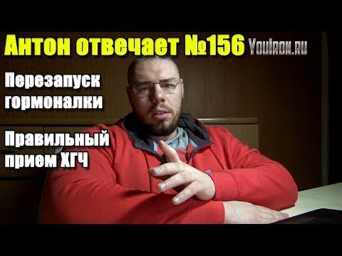 №156 ПЕРЕЗАПУСК ГОРМОНАЛКИ | ПРИЕМ ХГЧ